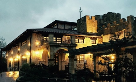 Menú para 2 personas con aperitivo, entrantes, principales, postre y bebida por 59,95 € en Palacio Torre de Arriaga