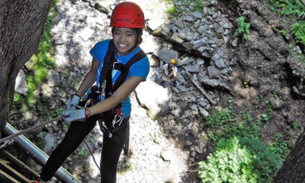 Cave Tour for 2 or 4 with Rappelling, Zipline or Both at American Cave Museum & Hidden River Cave (Up to 55% Off)
