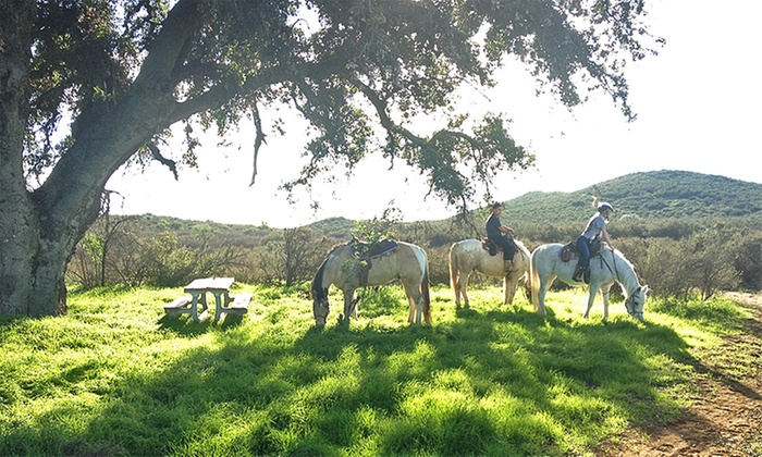Susie Q Ranch - Murrieta: Horseback-Riding Tour with Wine Tasting for Two, or Tour with Photos for Four from Susie Q Ranch (Up to 52% Off)