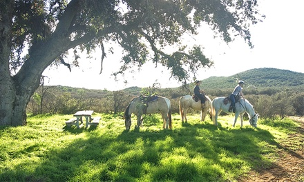Horseback-Riding Tour with Wine Tasting for Two, or Tour with Photos for Four from Susie Q Ranch (Up to 60% Off)