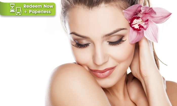 Trendimi: $5 for an Accredited Online Skin and Body Care Course from Trendimi ($229 Value)