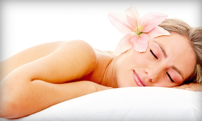 Christine's Day Spa - Littleton Common: Day of Beauty for One or Two with Massage, Facial, and Manicure at Christine's Day Spa (Up to 58% Off)