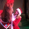 51% Off at The Dancing Horses Theatre