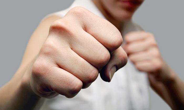 Ballistic Fighting Methods - Carpentersville: $45 for an Adult Personal Defense Tactics Class at Ballistic Fighting Methods ($109 Value)