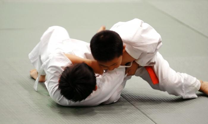 Team Bullshark - Emerson: One or Two Months of Kickboxing, Muay Thai, or Jiujitsu Classes at Team Bullshark (Up to 82% Off)