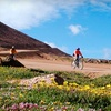Up to 52% Off a Pikes Peak Bike Tour
