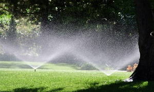 SeasonGreen Turf: $79 for Lawn Sprinkler Start-Up and Tune-Up at SeasonGreen Turf ($160 Value)