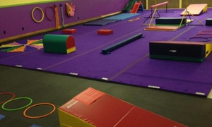 Fliptastics Gymnastics Of Cleveland Inc.: Two Weeks of Tumbling Classes at Fliptastics Gymnastics of Cleveland Inc. (44% Off)