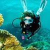 Up to 56% Off Scuba Experience or Certification