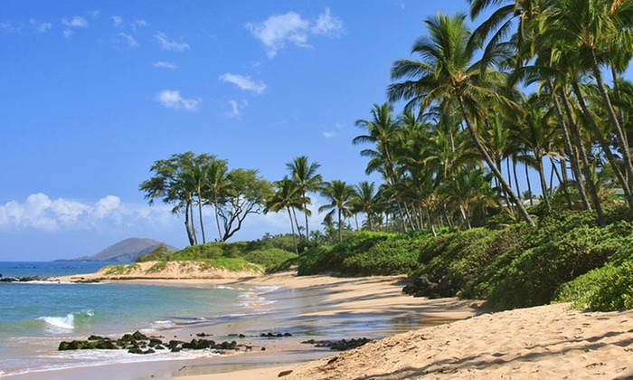 Discover Hawaii Tours - Discover Hawaii Tours: Photo Tour or Pearl Harbor Tour with Brunch for One, Two, or Four from Discover Hawaii Tours (Up to 47% Off)