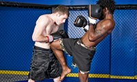 Five 105-Minute Muay Thai Classes for One or Two at Muay Thai Masters Academy