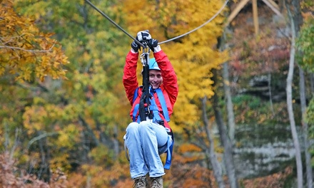 Tree Top Zipline Tour for Two or Four at Valley Zipline Tours (Up to 50% Off)
