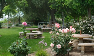 Briar Rose Winery: White or Red Wine Tasting for Two or Four at Briar Rose Winery (62% Off
