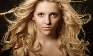 Whitney Morris at Impressions Salon & Spa: $36 for Three Blow-Dry Treatments from Whitney Morris at Impressions Salon & Spa ($75 Value)