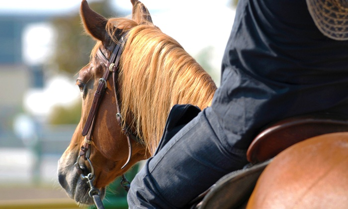 Heart of Dixie Farms - Elberton: One or Three 60-Minute Horseback-Riding Lessons at Heart of Dixie Farms (Up to 53% Off)