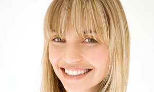 Salon Palomo: $25 for a Haircut and Protein Treatment at Salon Palomo ($145 Value)