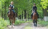 Mt. Madonna Stables - Watsonville: One or Three Horseback-Riding Lessons or Trail Ride for Two at Mt. Madonna Stables (Up to 45% Off)
