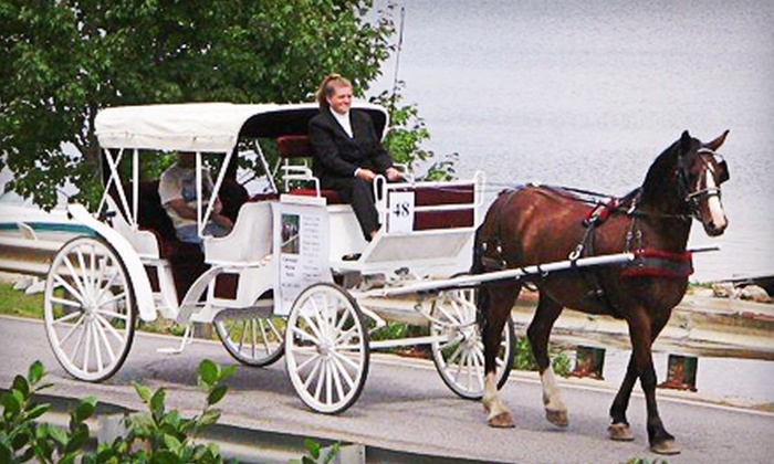 Carousel Horse Farm - Carousel Horse Farm: $42 forShort Carriage Ride for Up to Four andPony Ride for Two Kids from Carousel Horse Farm ($85 Value)