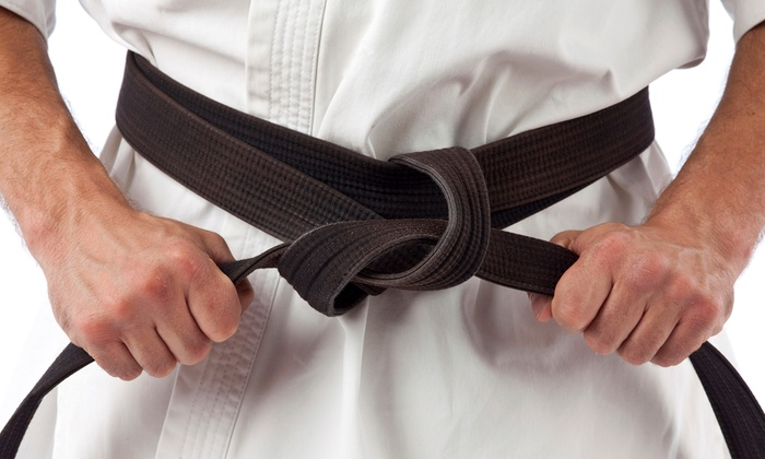 Eagle Martial Arts - Plano: 5 or 10 Tae Kwon Do Classes for Adults or Kids Aged 3 and Older at Eagle Martial Arts (Up to 80% Off)