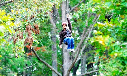 $75 for a 90-Minute Zipline Tour and Drop Tower for Two People at Mammoth Cave Adventures ($150 Value)