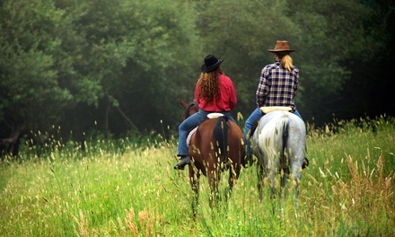 One- or Two-Hour Romantic Horseback Trail Ride for Two with Dinner at Calico Junction Mule Ranch (Up to 55% Off)