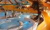 Zwembadtoegang + friet
