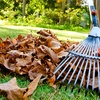 52% Off Pet Waste Removal