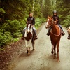 Up to 58% Off Horseback Trail Ride for 1, 2, or 4
