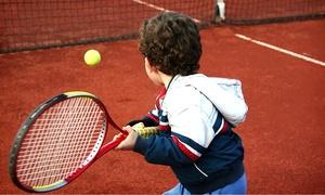 Pavão Tennis & Academia: Pavão Tennis & Academia – Santo André: 1, 3 ou 6 meses de aulas de tênis (adulto ou  infantil)