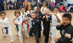 Southlake Martial Arts: $25 for $55 Worth of Martial Arts — Southlake Martial Arts