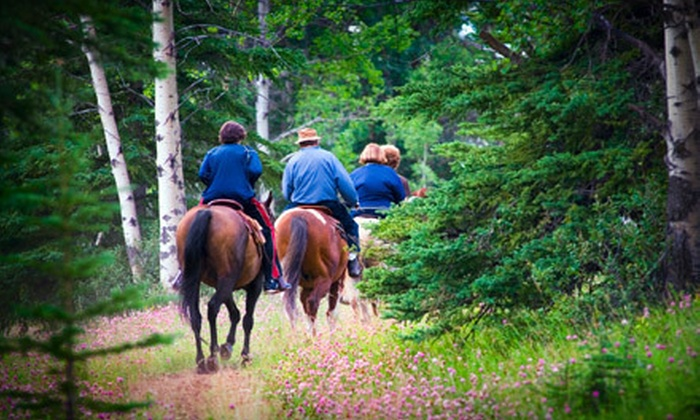 Stono River Riding Academy - Johns Island: One-Hour Guided Trail Ride for Two or Four from Stono River Riding Academy on Johns Island (Up to 58% Off)