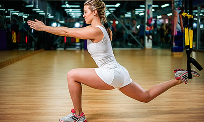 New England Nutrition - Bellingham: Four or Eight TRX Suspension-Training Classes at New England Nutrition (Up to 71% Off)