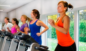 Dynamic Fitness: $9 for a One-Month Fitness and Tanning Package at Dynamic Fitness ($35 Value)