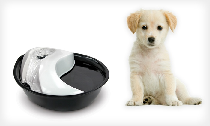 Pet Drinking Fountains: Pioneer Pet Drinking Fountains (Up to Half Off). Three Models Available. Free Shipping.