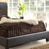 Haagen Dark-Brown Modern Bed