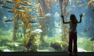 Bio Topic: $47 for $75 Worth of Aquarium Visits — Bio-Topic
