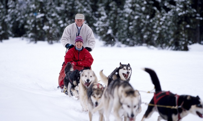 Mad Dogs & Englishmen Expeditions - The Mad Dog Cafe & Market: C$239 for a Two-Hour Weekday Dogsledding Tour for Two at Mad Dogs & Englishmen Expeditions (C$328 Value)