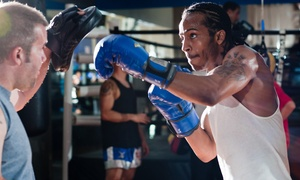 Freestyle Muay Thai: Five or Ten Classes for Adults or Kids or One Private Lesson at Freestyle Muay Thai (Up to 69% Off)