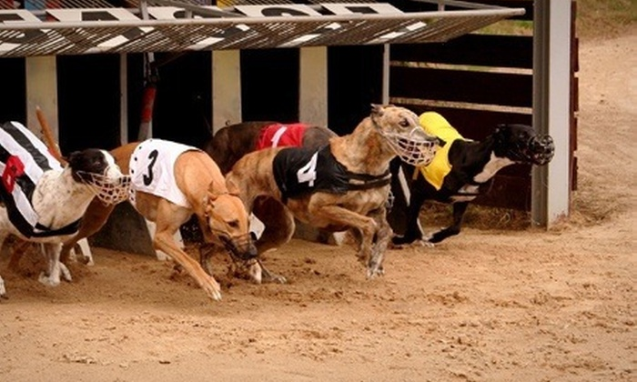 Henlow Racing Limited (GBGB) - Lower Stondon: Greyhound Racing Night For Two (£8), Four (£15) or Six (£22) With Meal and Racecard at Henlow Racing (Up to 68% Off)