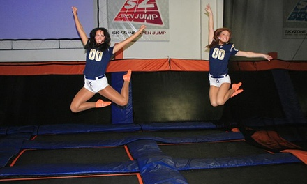 $13 for Two 60-Minute Jump Passes at Sky Zone St. Louis ($26 Value)