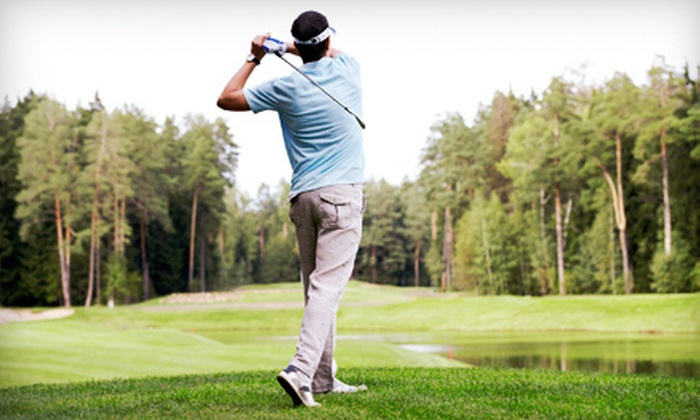 Sugar Grove Golf Center - Sugar Grove: One or Two 60-Minute Private Golf Lessons with Dick Stilin at Sugar Grove Golf Center (Up to 54% Off)