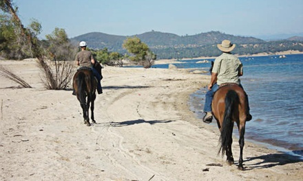 Trail Ride with Picnic from Boarding On The Lake (Up to 56% Off). Three Options Available.