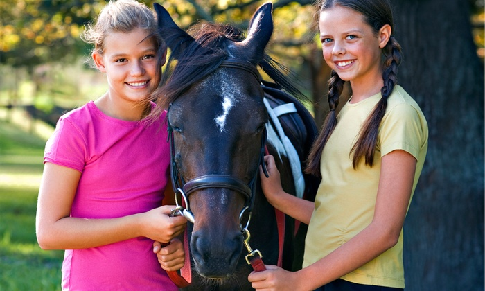 High Point Arena - Kearney: Horseback-Riding Party for Up to 10 Kids, or One or Three Horseback-Riding Lessons at High Point Arena (Up to 58% Off)