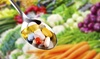 Up to 92% Off Nutritional Consultation