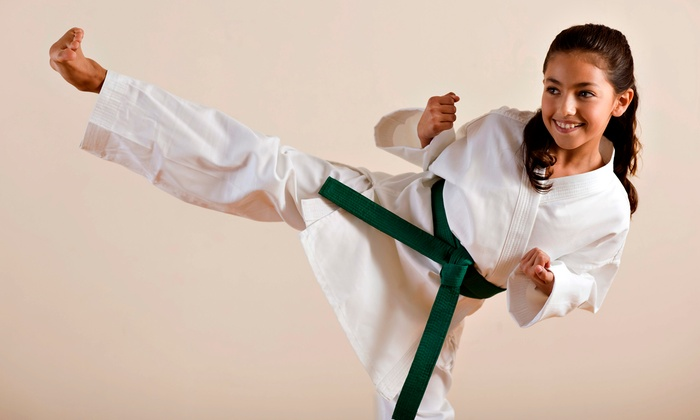 The American Academy of Self Defense - The American Academy of Self Defense: One Month of Martial-Arts Classes for Kids, Teens, or Adults at American Academy of Self Defense (Up to 70% Off)
