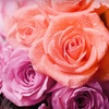 Up to 61% Off Floral Bouquets in Orland Park