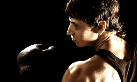 10 or 20 Boxing-Fitness Boot-Camp Classes at Old Skool Fight Sports & Fitness Academy (Up to 76% Off)