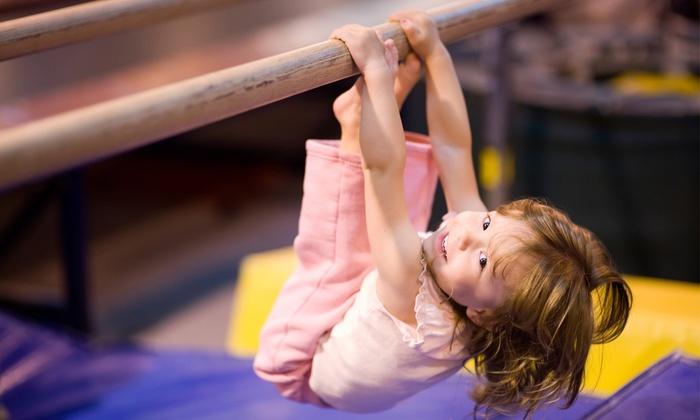 World of Gymnastics and Cheer - Woodstock: Four or Eight Preschool Gymnastics or Cheerleading Classes at World of Gymnastics and Cheer (Up to 61% Off)