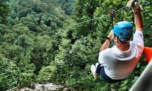 Black Mountain Thunder Zipline: Two-Hour Zipline Tour for One or Two from Black Mountain Thunder Zipline (Up to 56% Off)