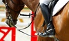 Up to 54% Off Private Horseback-Riding Lessons